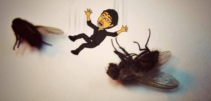 Falling like flies